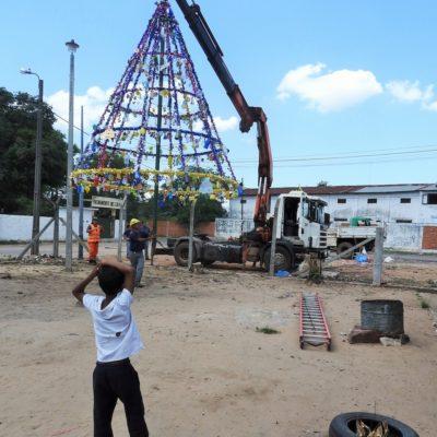 2. Arbolito navideño, Escuela San Vicente de Paul, montaje (1)
