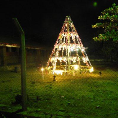4. Arbolito navideño, Escuela San Vicente de Paul (1)