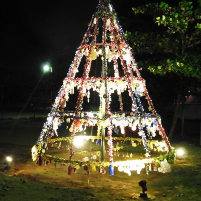 4. Arbolito navideño, Escuela San Vicente de Paul (2)