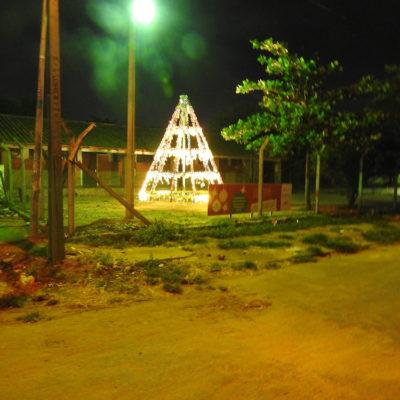 4. Arbolito navideño, Escuela San Vicente de Paul (3)